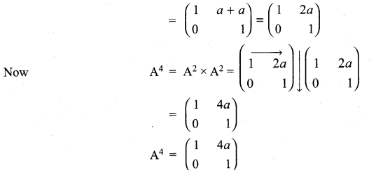 11th Maths Volume 2 Exercise 7.1 Answers Samacheer Kalvi Chapter 7 Matrices And Determinants