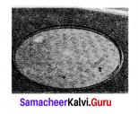 Samacheer Kalvi 6th Maths Solutions Term 3 Chapter 4 Geometry Intext Questions 67