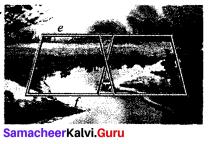 Samacheer Kalvi 9th Maths Chapter 4 Geometry Ex 4.2 9