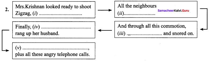 10th English Zigzag Paragraph Samacheer Kalvi Chapter 2