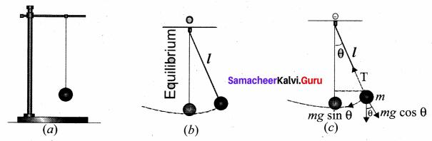 Samacheer Kalvi 11th Physics Solutions Chapter 10 Oscillations 67