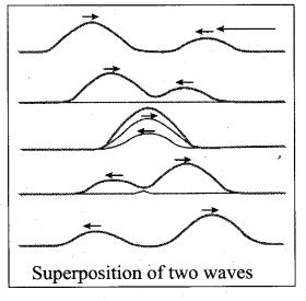 Samacheer Kalvi 11th Physics Solutions Chapter 11 Waves 39