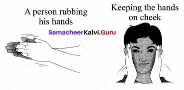 Samacheer Kalvi 11th Physics Solutions Chapter 8 Heat and Thermodynamics 351