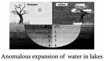 Samacheer Kalvi 11th Physics Solutions Chapter 8 Heat and Thermodynamics 431
