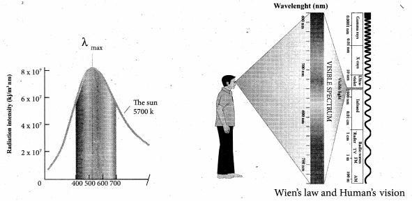 Samacheer Kalvi 11th Physics Solutions Chapter 8 Heat and Thermodynamics 47