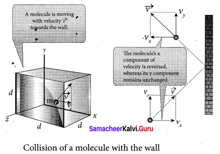 Samacheer Kalvi 11th Physics Solutions Chapter 9 Kinetic Theory of Gases 26