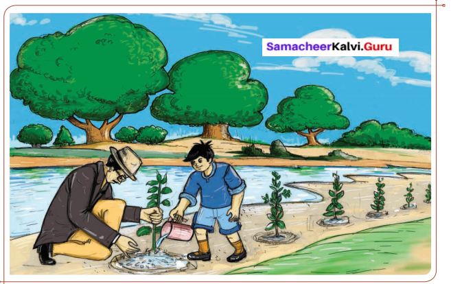 Samacheer Kalvi 6th English Solutions Term 1 Prose Chapter 2 When the Trees Walked 2