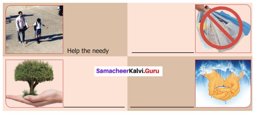 Owlie's Gone Samacheer Kalvi 6th English Solutions Term 1 Supplementary Chapter 1