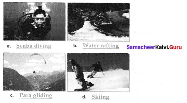 Sports Stars 6th English Summary Samacheer Kalvi Term 2 Prose Chapter 1