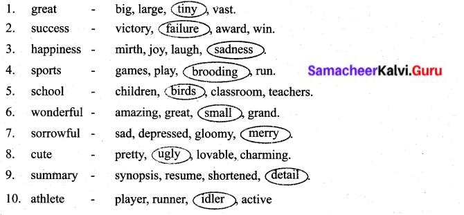 Samacheer Kalvi 6th English Solutions Term 2 Prose Chapter 1 Sports Stars 20