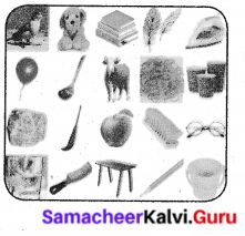 Samacheer Kalvi 6th Science Solutions Term 1 Chapter 3 Matter Around Us 13