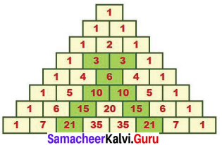 Samacheer Kalvi 7th Maths Solutions Term 2 Chapter 5 Information Processing Ex 5.3 3