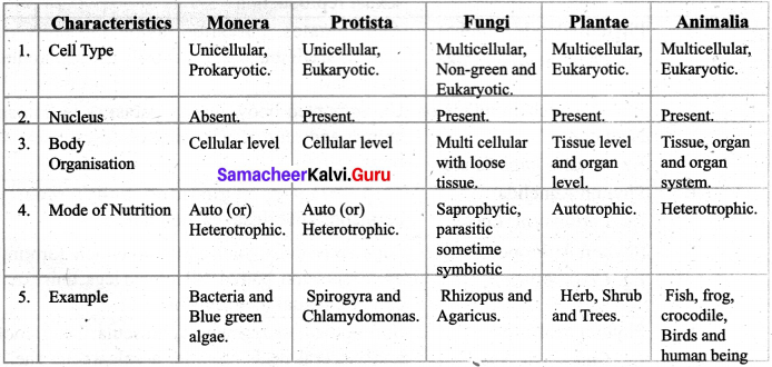 Basis Of Classification Class 7 Samacheer Kalvi Science Solutions Term 2 Chapter 5