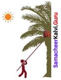 Samacheer Kalvi 8th Maths Solutions Term 2 Chapter 1 Life Mathematics Ex 1.3 6