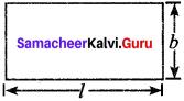 Samacheer Kalvi 8th Maths Solutions Term 2 Chapter 2 Algebra Ex 2.2 1