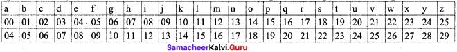 Samacheer Kalvi 8th Maths Solutions Term 2 Chapter 4 Information Processing Ex 4.3 23