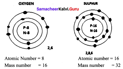 Atomic Structure Class 9 Samacheer Kalvi Chapter 11