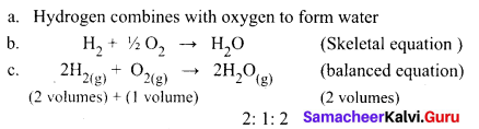 9th Science Atomic Structure Answers Samacheer Kalvi Chapter 11