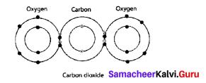 9th Science Chemical Bonding Samacheer Kalvi Solutions Chapter 13