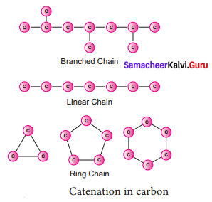 Chapter 15 Carbon And Its Compounds Samacheer Kalvi 9th Science Solutions