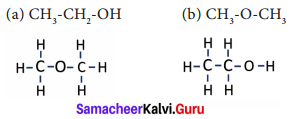 Carbon And Its Compounds Class 9 Samacheer Kalvi Science Solutions Chapter 15
