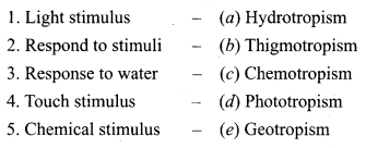 Samacheer Kalvi 9th Science Solutions Chapter 19 Plant Physiology 9