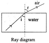 Light Chapter Of Class 6 Pdf Samacheer Kalvi 9th Science
