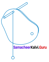 Samacheer Kalvi 7th Books Science Solutions Term 1 Chapter 2 Force And Motion