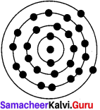 Unit 4 Atomic Structure Answers Samacheer Kalvi 7th Science Solutions Term 1