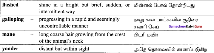 Samacheer Kalvi 12th English Solutions Poem Chapter 6 Incident of the French Camp img-5