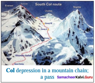 The Summit 12th Prose Paragraph Samacheer Kalvi English Solutions Chapter 4