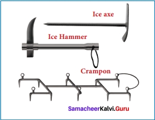 The Summit Within Summary Samacheer Kalvi 12th English Solutions Prose Chapter 4