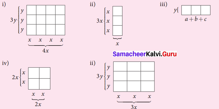 Samacheer Kalvi 7th Maths Solutions Term 3 Chapter 3 Algebra Intext Questions 1