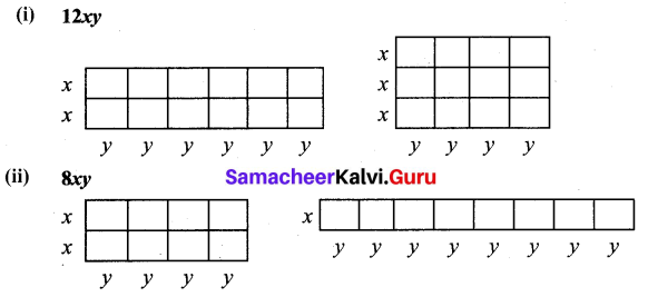 Samacheer Kalvi 7th Maths Solutions Term 3 Chapter 3 Algebra Intext Questions 2