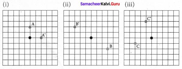Samacheer Kalvi 7th Maths Solutions Term 3 Chapter 4 Geometry Ex 4.1 12