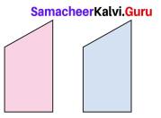 Samacheer Kalvi 7th Maths Solutions Term 3 Chapter 4 Geometry Ex 4.1 16