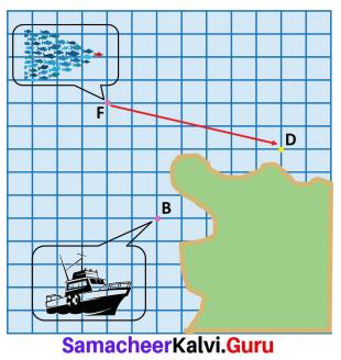 Samacheer Kalvi 7th Maths Solutions Term 3 Chapter 4 Geometry Ex 4.1 17