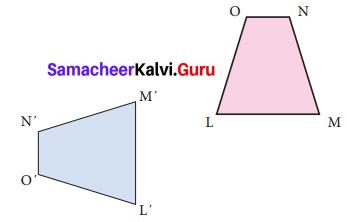 Samacheer Kalvi 7th Maths Solutions Term 3 Chapter 4 Geometry Ex 4.1 19