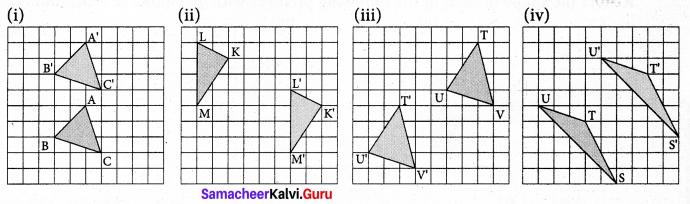 Samacheer Kalvi 7th Maths Solutions Term 3 Chapter 4 Geometry Ex 4.1 5
