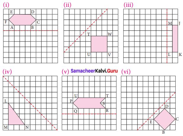 Samacheer Kalvi 7th Maths Solutions Term 3 Chapter 4 Geometry Ex 4.1 6