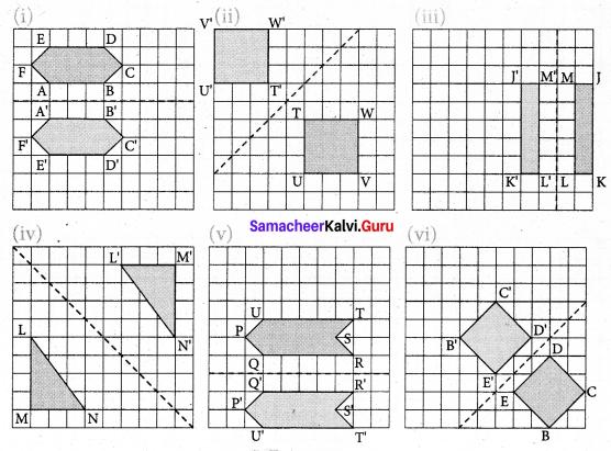 Samacheer Kalvi 7th Maths Solutions Term 3 Chapter 4 Geometry Ex 4.1 7