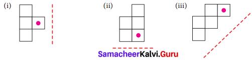 Samacheer Kalvi 7th Maths Solutions Term 3 Chapter 4 Geometry Ex 4.1 8