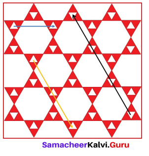 Samacheer Kalvi 7th Maths Solutions Term 3 Chapter 4 Geometry Ex 4.3 4