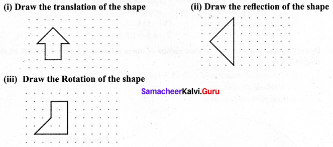 Samacheer Kalvi 7th Maths Solutions Term 3 Chapter 4 Geometry Ex 4.3 8