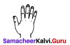 Samacheer Kalvi 7th Maths Solutions Term 3 Chapter 4 Geometry Intext Questions 1
