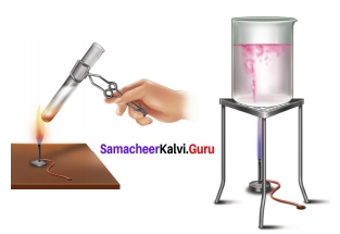 Samacheer Kalvi 7th Science Solutions Term 3 Chapter 4 Chemistry in Daily Life
