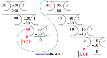 Samacheer Kalvi 8th Maths Solutions Term 2 Chapter 4 Information Processing Ex 4.2 7