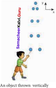 11th Samacheer Kalvi Physics Book Back <br/>Answers Chapter 2 Kinematics