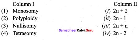 Samacheer Kalvi 12th Bio Botany Solutions Chapter 3 Chromosomal Basis of Inheritance