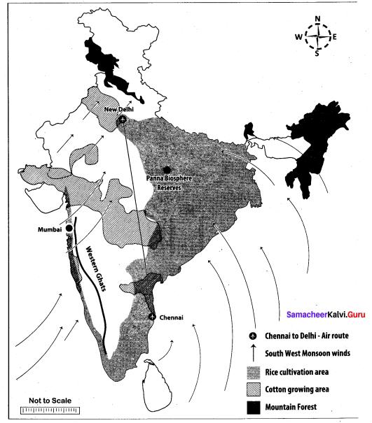 Samacheer Kalvi 10th Social Science Model Question Paper 1 English Medium - 10